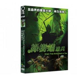 合友唱片 綠樹蟻雄兵  DVD  Green Tree Ants: Friend or F