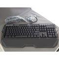 ^~銀鍵盤^~芝奇 G.SKILL RIPJAWS KM780R CHERRY MX軸 電