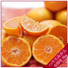 ~鄒頌~~ 愛媛縣中島極品溫室小蜜橘~15顆裝