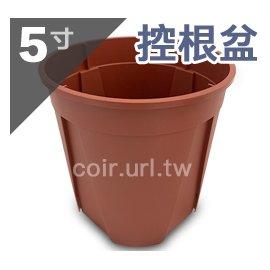 5寸(14.3cm)控根盆-红色