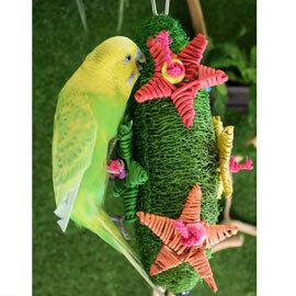 ~寵物鳥世界~ AMG0460 Amigo 阿迷購 美國舒寶 絲瓜聖誕樹