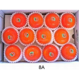 ~海拔1200米 甜柿~8A~24粒~15台斤 箱~1箱 組~10 05起訂11 30結束
