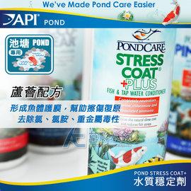 ~AC草影~免 !API 魚博士 池塘水質穩定劑(473ml)~一瓶~