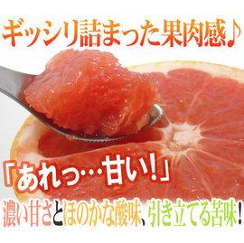 ~鄒頌~ 美國 葡萄柚~10顆2.7公斤~每顆270克以上