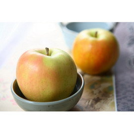 ~阿洲水果~ TOKI套袋蘋果 14~16粒 出貨