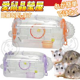 SAIKO X~44~寵物愛鼠晶瑩屋中型鼠籠