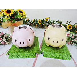 ^~^~Just71^~^~ 絨毛娃娃 帶回 可愛 小豬盆栽 MINISO 盆栽  動物