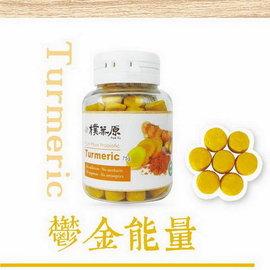 【紫貝殼】『ZC09-2』【 樸葉原 】鮮梅益菌果- 鬱金能量 ( 薑黃 口味)