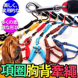 dyy~狗狗亮彩伸縮彈力項圈胸背牽繩S號8mm小型犬