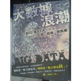 ~書寶 書T7╱財經企管_WFJ~大數據浪潮:探索BIG DATA之洶湧_李德偉