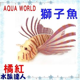 【水族達人】【造景裝飾】水世界AQUA WORLD《lion fish 螢光橘紅色 獅子魚 小型 G-080-S-C》