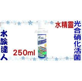 【水族達人】【硝化菌】水精靈《光合硝化活菌.250ml》淨化水質、穩定水質!