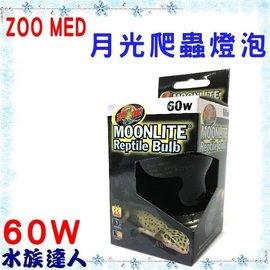 【水族達人】【兩棲爬蟲用品】美國ZOO MED《月光爬蟲燈泡 60W ML-60》仿月光 保溫必備!