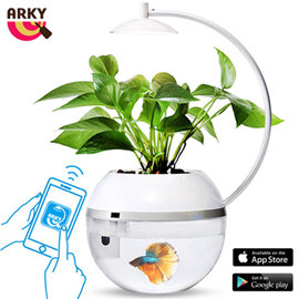 《ARKY》香草與魚2.0智能版 Herb&Fish Connect.