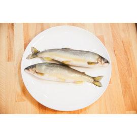 ~傑克 海鮮~香魚 Sweetfish(2尾 約400g  包)帶卵 ~ 季節性