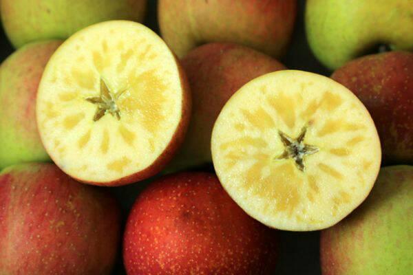 大禹農場-蜜蘋果(30顆)