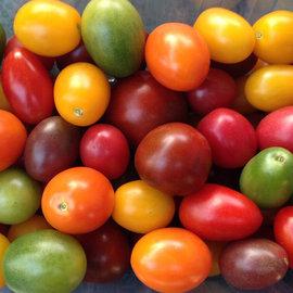 新鮮 彩色小番茄 300g mixed tomatoes 擺盤 沙拉 料理