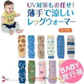 KID'S BASIC夏季新生兒超薄護膝 爬行學步護膝 純棉超薄兒童襪套 【HH婦幼館】