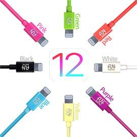 FUNDIGITAL Apple   傳輸充電線 MFI 8Pin Lighting ca