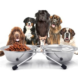 ~OurPets~ Dyy寵物犬貓不�袗�食碗雙碗 附支架 13cm預防脊椎側彎
