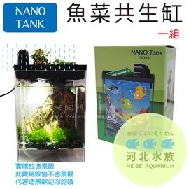 河北水族   NANO TANK~ 魚菜共生缸 內附白燈 一組 ~SO~Q