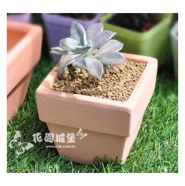 素烧四方盆-小(9.6*9.5*H9cm)