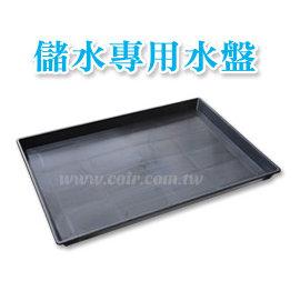储水专用水盘58*42cm(端盘、穴盘)
