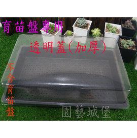 【园艺城堡】透明盖(育苗盘专用)~加厚 低闷箱育苗盘用 多肉植物 仙人掌 居家园艺