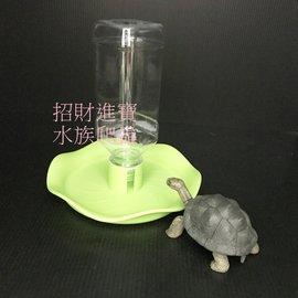 爬虫 水盆 星龟 角蛙 守宫 补水盆 两栖 陆龟 蜥蜴 乌龟  象龟 苏卡塔尔 箱 缸 宠物 用品 喂食 器RW-07