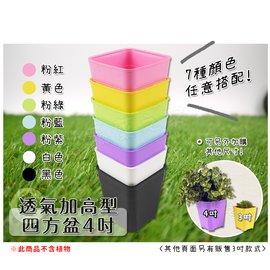 【蔬菜之家005-D150】透气加高型四方盆4吋(黑色.白色共2色可选)