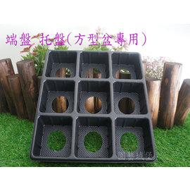 【园艺城堡】端盘 托盘(方型盆专用) ~ 9格方孔