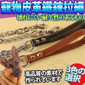 DYY~寵物皮革好擋頭鐵鍊拉繩180cm防止狗咬斷~3mm