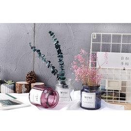 zakka 雜貨 藍色 透明 紫紅色 紅色 玻璃 花器 水培花器 花瓶 水耕花器 GOT0