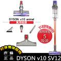 Dyson Cyclone SV12 V10 animal 萬用床墊5吸頭組 萬能型主吸頭 無線 手持 吸塵器