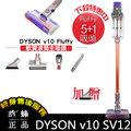 Dyson Cyclone V10 Fluffy 5+1吸頭 軟質滾筒主吸頭 戴森無線手持吸塵器
