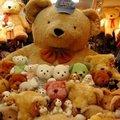 【限量珍藏‧永恆見証】超大巨無霸泰迪熊黃金亮毛熊(證書)--世界上最大泰迪熊來了(有原廠保証書,品質才有保障)