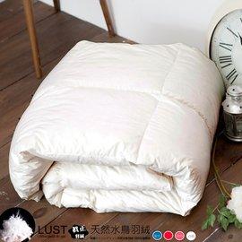 【LUST】日系-天然羽絲絨被 1.8公斤 輕盈保暖、十天滿意鑑賞 -(羽絨原料)台灣製、4.5X6.5尺