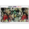 【魚舖子】雙面背景圖*珊瑚&岩板 (高度1尺) 零售長度1尺起∼便宜賣