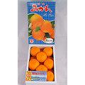 《上和水果》日本佐賀無籽溫室蜜柑1.2KG