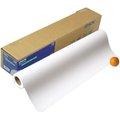 EPSON S041385 / 寬24英吋x 長度25公尺 原廠 (厚) 優質雪面銅版紙【海報用紙】* 1捲