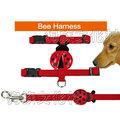 ★DAB 【636I 瓢蟲三分H帶胸背+牽繩組】3公斤以下犬適用
