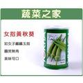 【蔬菜工坊】G79.女指黃秋葵種子