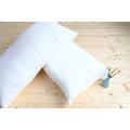 《清新除臭》 透氣壓縮枕 中低枕