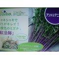 ~大包裝蔬菜種子~紅莖京水菜,9月~隔年5月 種植