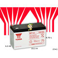 ☼台中苙翔電池►YUASA 臺灣湯淺 密閉式 NP7-12 (紅標) 12V7AH 設備電池 UPS不斷電系統