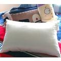 美國田邊製棉╱負離子釋壓枕【2入】