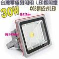 [零極限照明]標準型戶外COB LED防水 30W 投射燈 探照燈專門 戶外照明 100W 50W 20W 10W