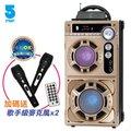 【酷購Cutego】IFIVE HiFi手提式卡拉OK音響-流沙金 ( IF-S15209 ) 免運含稅