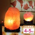 【鹽夢工場】鹽燈兩入組(玫瑰4-5kg|USB小聚寶盆)