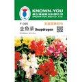 種子王國 金魚草 F-040 矮性品種 每包約200粒 農友種苗花卉種子